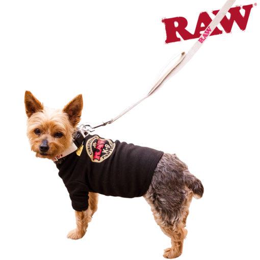 RAW Hemp Dog Leash